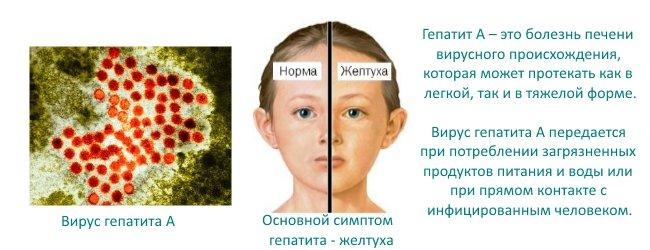 Нужно ли ставить прививку от гепатита А ребенку