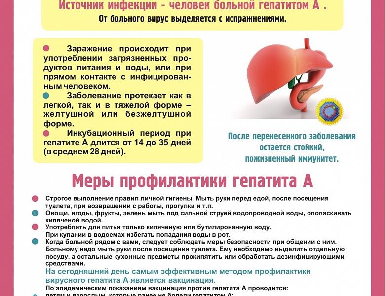 Профилактика гепатита С при контакте с больным