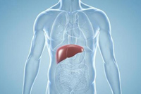 Epclusa — двойной удар по вирусу гепатита С