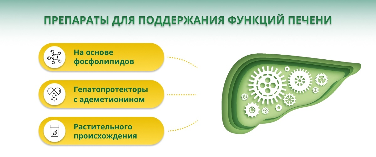 Основные препараты для печени при гепатите С