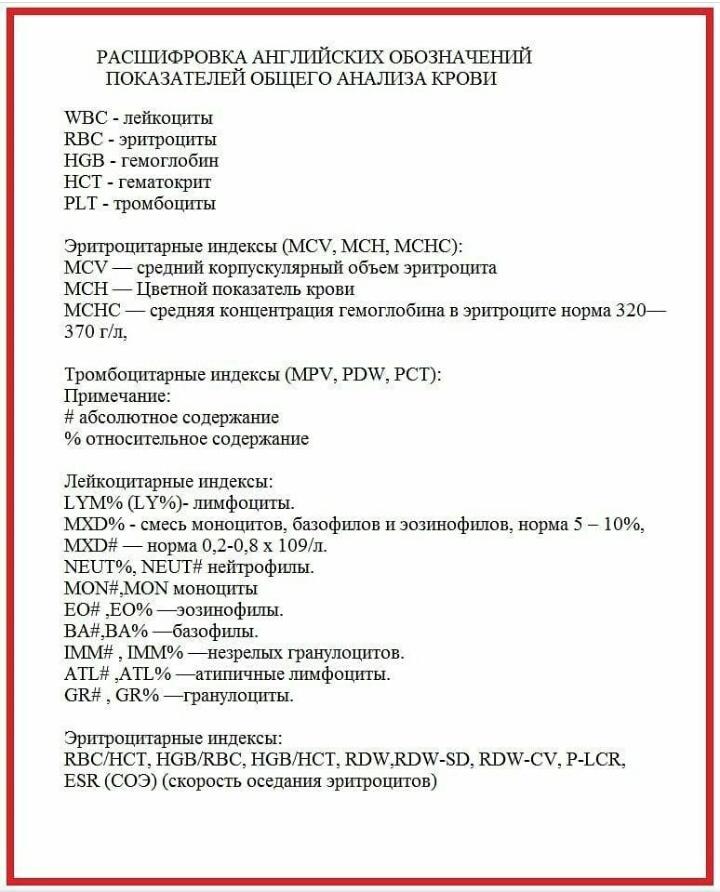 Значение анализа крови на гепатит С: расшифровка
