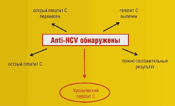 В каких случаях анализ на гепатит С положительный?
