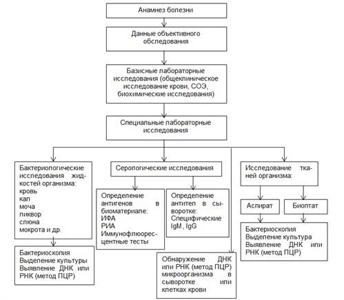 Диагностика всех видов гепатита – лабораторные методы и анализы