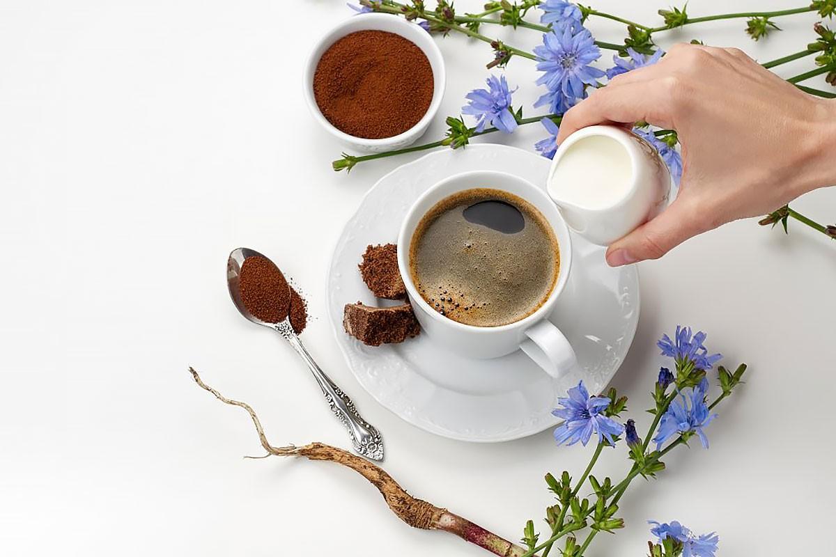 Кофе и цикорий при гепатите С — полезны или вредны напитки?