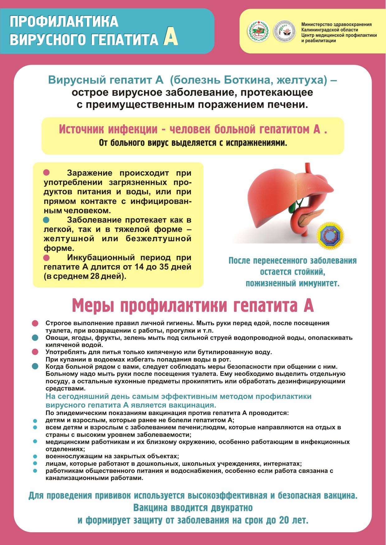 Как проводится профилактика вирусных гепатитов