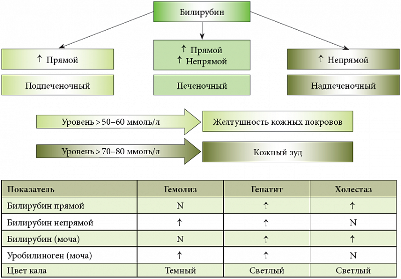Диагностика холестатического гепатита