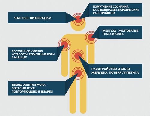 Опасность вируса гепатита