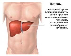 Заболевание печени