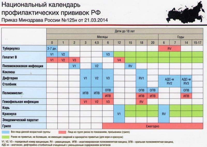 График вакцинации детей до 1 года