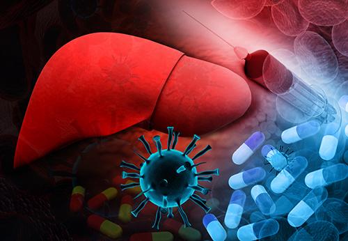 Вирус гепатита в крови