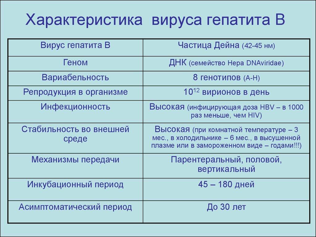 Характеристика вируса гепатита В