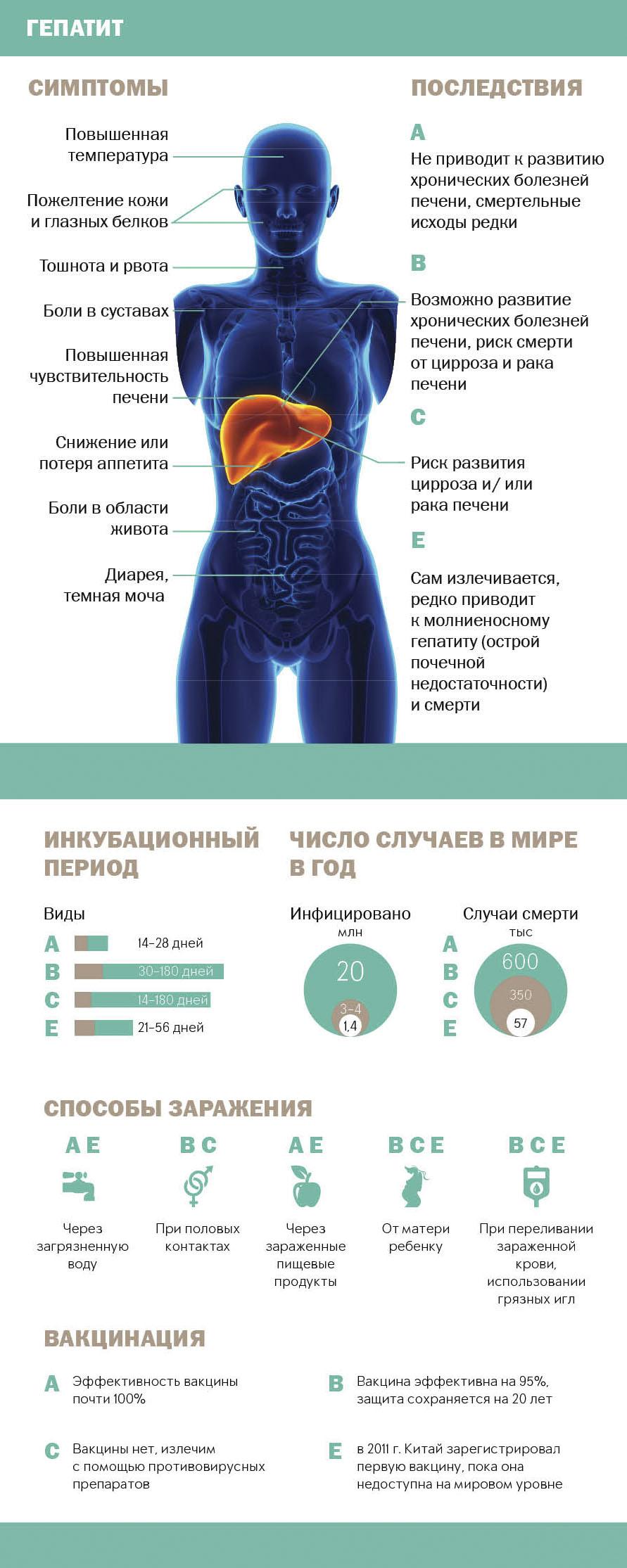 Первые симптомы вирусных гепатитов