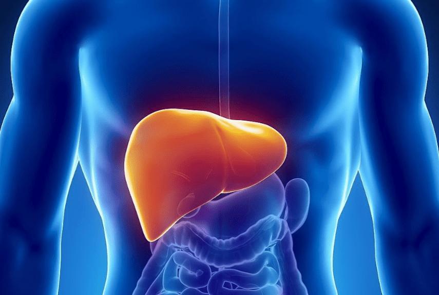 Злокачественный гепатит у людей