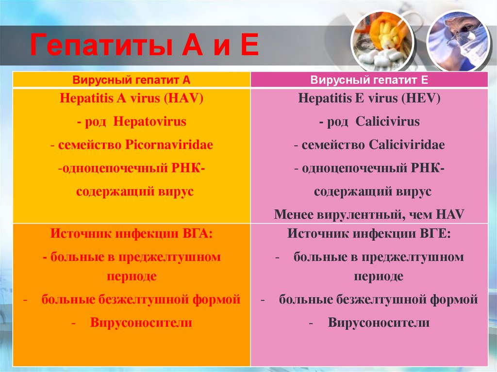 Гепатиты А и Е