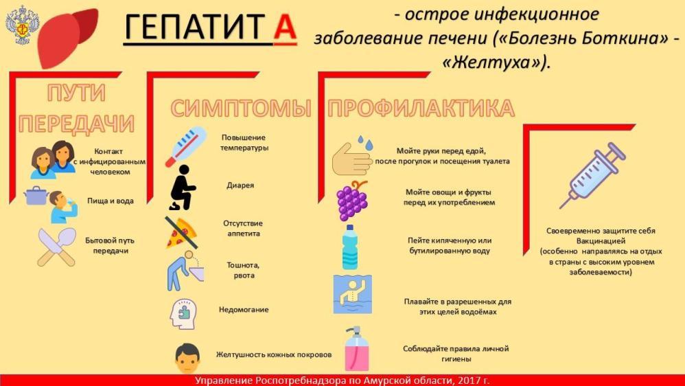 Пути передачи и профилактика гепатитов