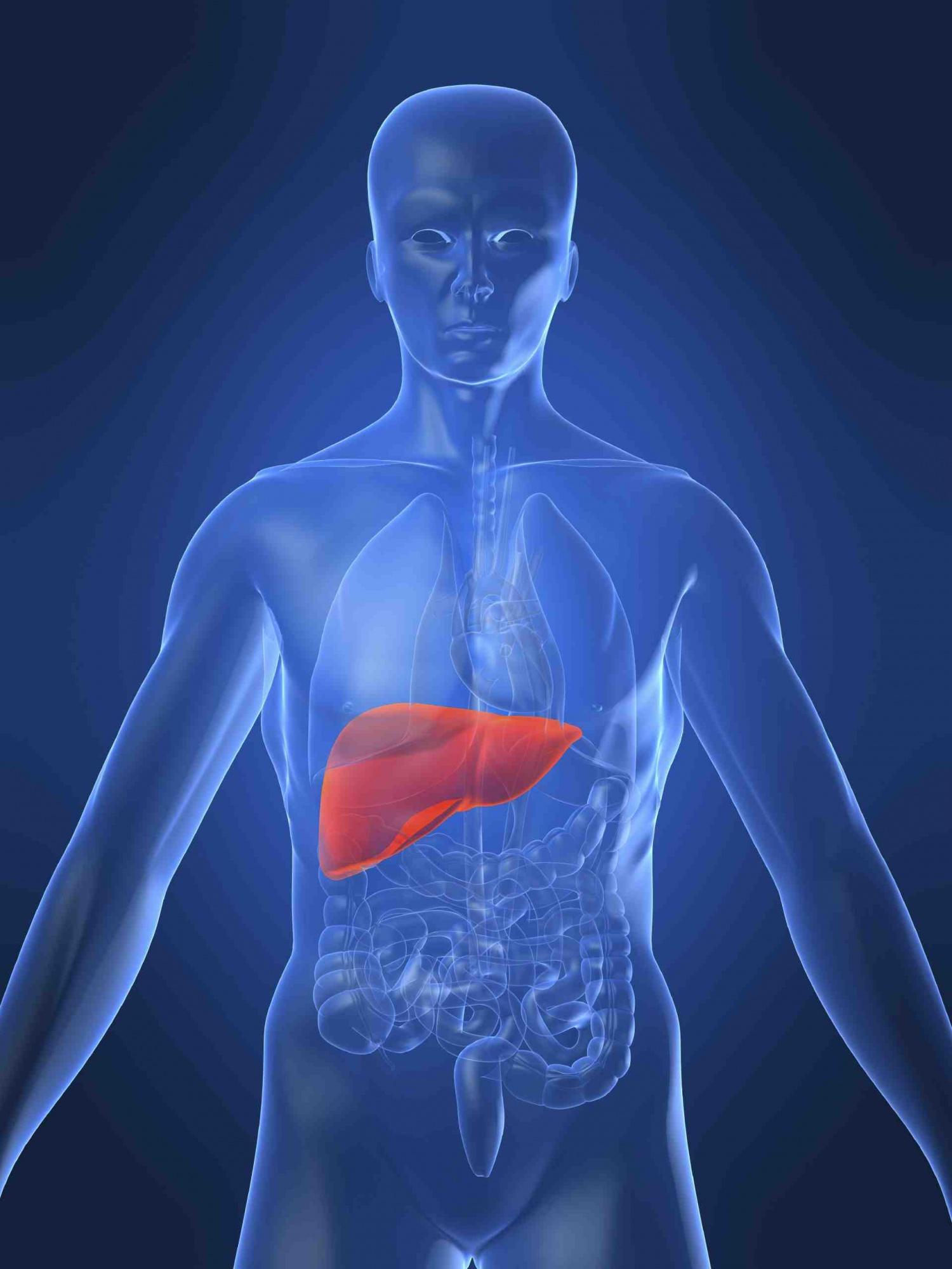 Алкогольный и токсический гепатит