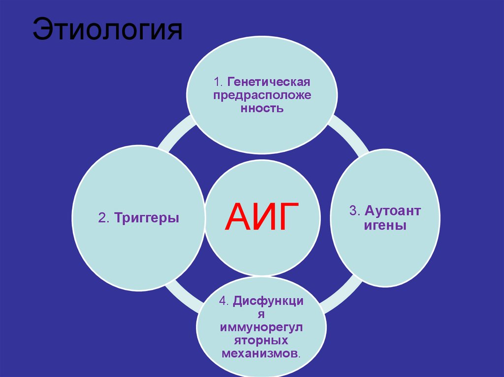 Этиология АИГ