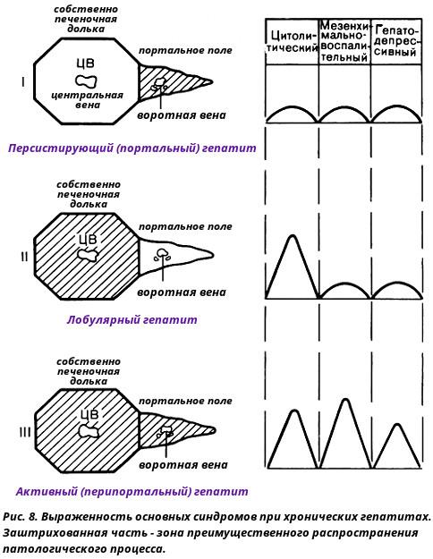 Лобулярный и портальный гепатит