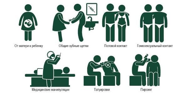 Пути передачи гепатитов