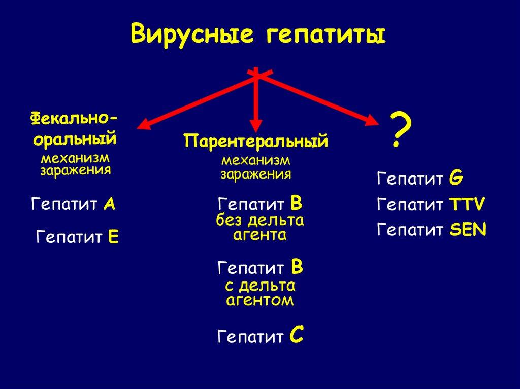 Вирусы с парентеральным механизмом передачи