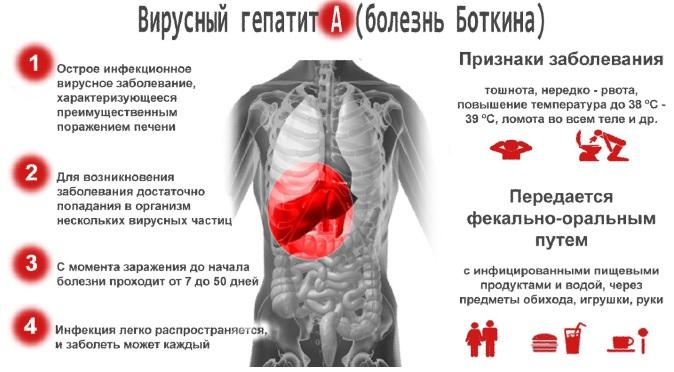 Заражение гепатитом A