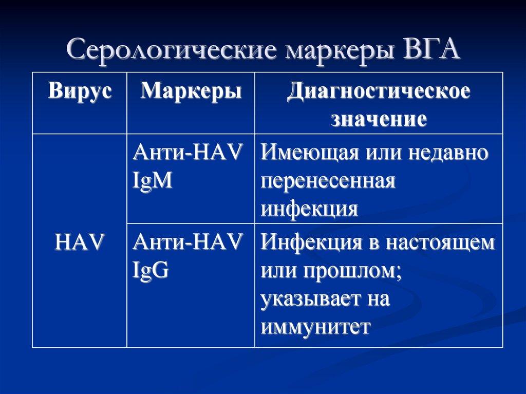 Маркеры HAV