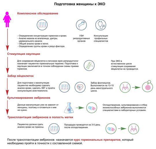Подготовка женщины к ЭКО