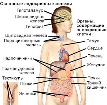 Симптомы со стороны ЖКТ